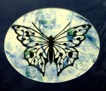 butterfly i matted 11x14) $40