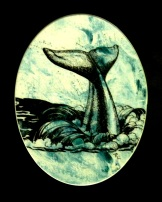 whale tale (matted to 14x11) $40