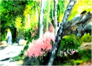 Botantical Garden in Maine (Oil) $125