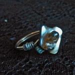Ring Shell Aqua